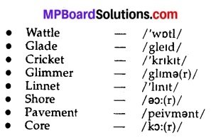 Mp Board Class 10 English Workbook Solutions Chapter 14