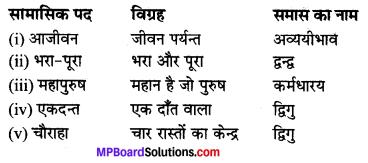MP Board Class 10th Hindi Navneet Solutions गद्य Chapter 1 मैं और मेरा देश img-1