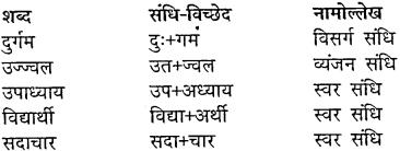 Class 10 Hindi Chapter 5 Mp Board MP Board