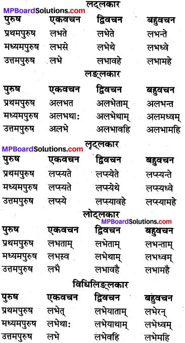 MP Board Class 10th Sanskrit व्याकरण धातु रूप-प्रकरण img 11