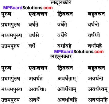 MP Board Class 10th Sanskrit व्याकरण धातु रूप-प्रकरण img 14