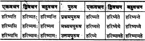 MP Board Class 10th Sanskrit व्याकरण धातु रूप-प्रकरण img 26