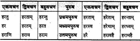 MP Board Class 10th Sanskrit व्याकरण धातु रूप-प्रकरण img 27