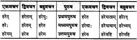 MP Board Class 10th Sanskrit व्याकरण धातु रूप-प्रकरण img 28