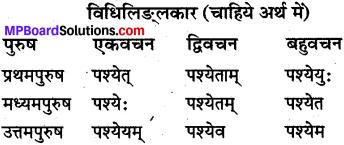 MP Board Class 10th Sanskrit व्याकरण धातु रूप-प्रकरण img 6