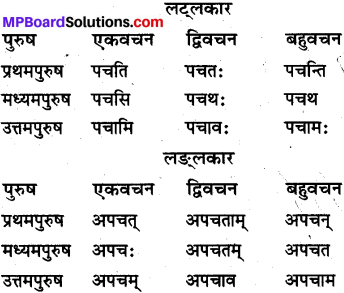 MP Board Class 10th Sanskrit व्याकरण धातु रूप-प्रकरण img 7