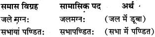 Samas Sanskrit Class 10 MP Board