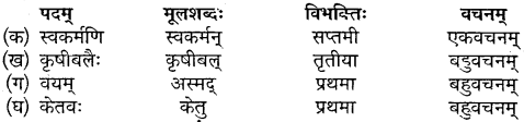 Class 10 Sanskrit Chapter 10 Mp Board