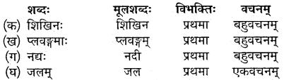 Class 10 Sanskrit Chapter 12