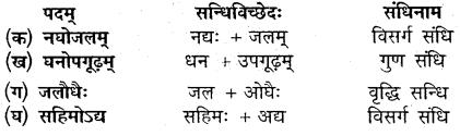 Chapter 12 Sanskrit Class 10