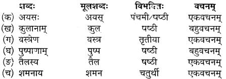 MP Board Class 10th Sanskrit Solutions Chapter 13 महाभारते विज्ञानम् img 3