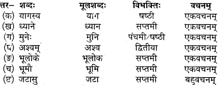 MP Board Class 10th Sanskrit Solutions Chapter 15 भगीरथः img 3