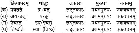 Class 10 Sanskrit Chapter 18
