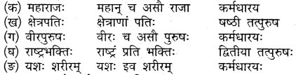 Class 10 Sanskrit Chapter 18 Mp Board