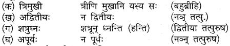 Mp Board Solution Class 10 Sanskrit Chapter 20
