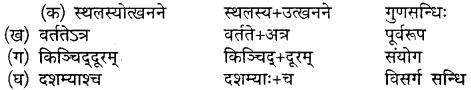 Sanskrit Class 10 Chapter 20 Mp Board