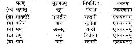 MP Board Class 10th Sanskrit Solutions Chapter 6 यशः शरीरम् img 3