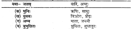 MP Board Class 10th Sanskrit Solutions Chapter 6 यशः शरीरम् img 7