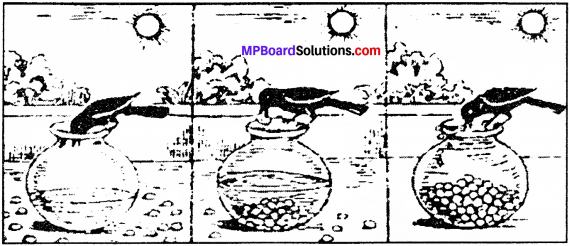 MP Board Class 10th Special English Composition Visual Stimulus 1