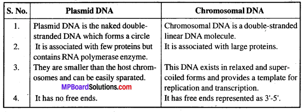 MP Board Class 12th Biology Solutions Chapter 11 Biotechnology Principles And Processes 4