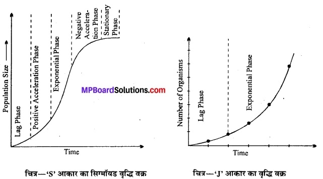 MP Board Class 12th Biology Solutions Chapter 13 जीव और समष्टियाँ 11