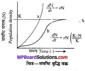 MP Board Class 12th Biology Solutions Chapter 13 जीव और समष्टियाँ 5