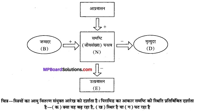 MP Board Class 12th Biology Solutions Chapter 13 जीव और समष्टियाँ 8