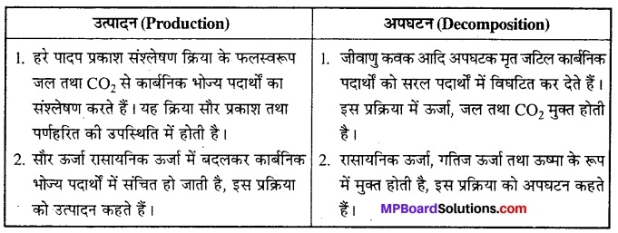 MP Board Class 12th Biology Solutions Chapter 14 पारितंत्र 3