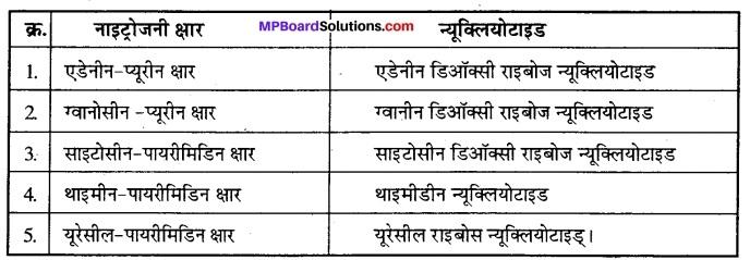 MP Board Class 12th Biology Solutions Chapter 6 वंशागति का आणविक आधार 1