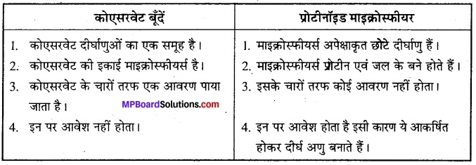 MP Board Class 12th Biology Solutions Chapter 7 विकास 5