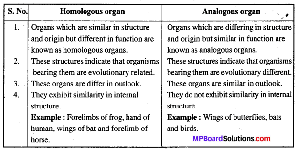 MP Board Class 12th Biology Solutions Chapter 7 Evolution 9