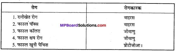 MP Board Class 12th Biology Solutions Chapter 9 खाद्य उत्पादन में वृद्धि की कार्यनीति 1