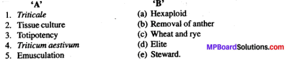 MP Board Class 12th Biology Solutions Chapter 9 Strategies for Enhancement in Food Production 2