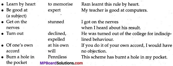 Albert Einstein At School Summary MP Board Class 12th English