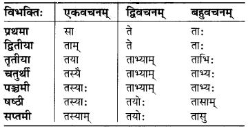 MP Board Class 6th Sanskrit व्याकरण-खण्डः 12