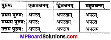 MP Board Class 6th Sanskrit व्याकरण-खण्डः 25