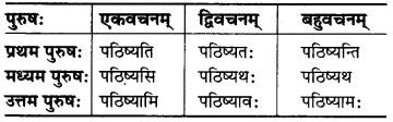 MP Board Class 6th Sanskrit व्याकरण-खण्डः 26