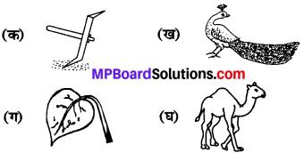 MP Board Class 6th Sanskrit Model Question Paper 3