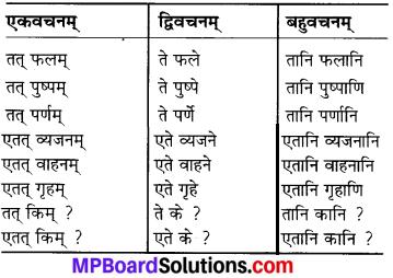 MP Board Class 6th Sanskrit Solutions Chapter 3 सर्वनामशब्दाः 20