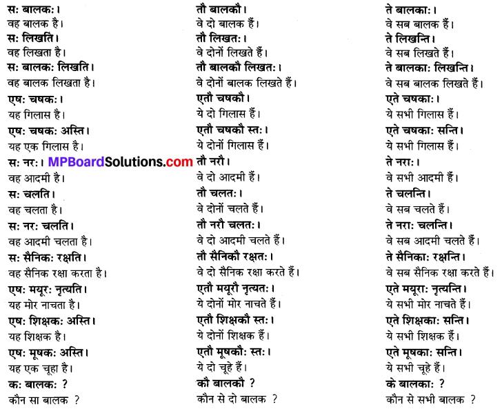 फलम् पतति Meaning In Hindi Mp Board