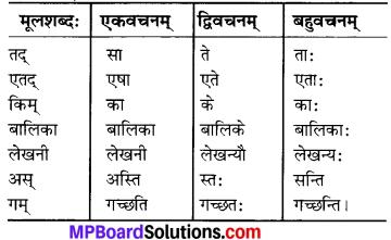 MP Board Class 6th Sanskrit Solutions Chapter 3 सर्वनामशब्दाः 8