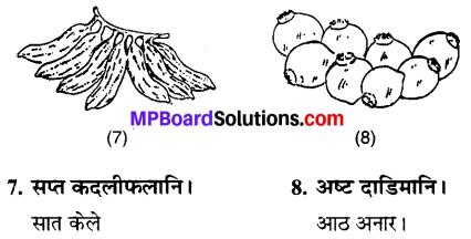 MP Board Class 6th Sanskrit Solutions Chapter 4 सङ्ख्याबोधः 24