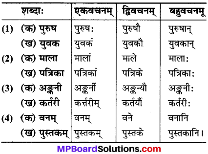 MP Board Class 6th Sanskrit Solutions Chapter 6 मम दिनचर्या 2