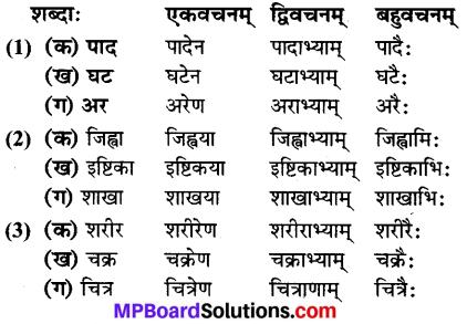 कक्षा 6 संस्कृत पाठ 7 Mp Board