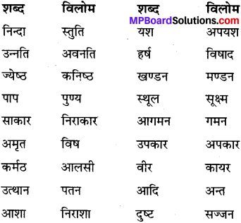 MP Board Class 6th Special Hindi व्याकरण 5