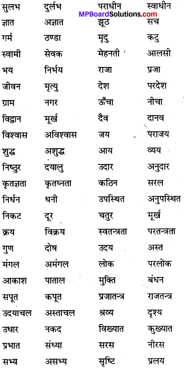 MP Board Class 6th Special Hindi व्याकरण 6