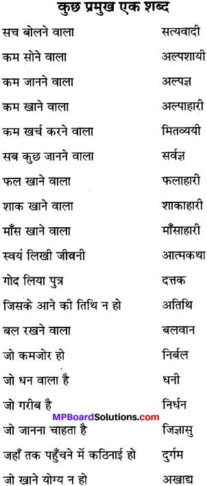 MP Board Class 6th Special Hindi व्याकरण 8