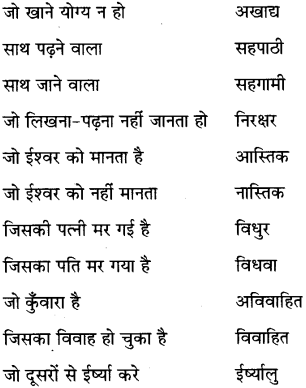 MP Board Class 6th Special Hindi व्याकरण 9