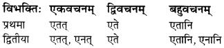 MP Board Class 7th Sanskrit व्याकरण-खण्डः img 11