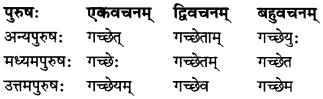 MP Board Class 7th Sanskrit व्याकरण-खण्डः img 20